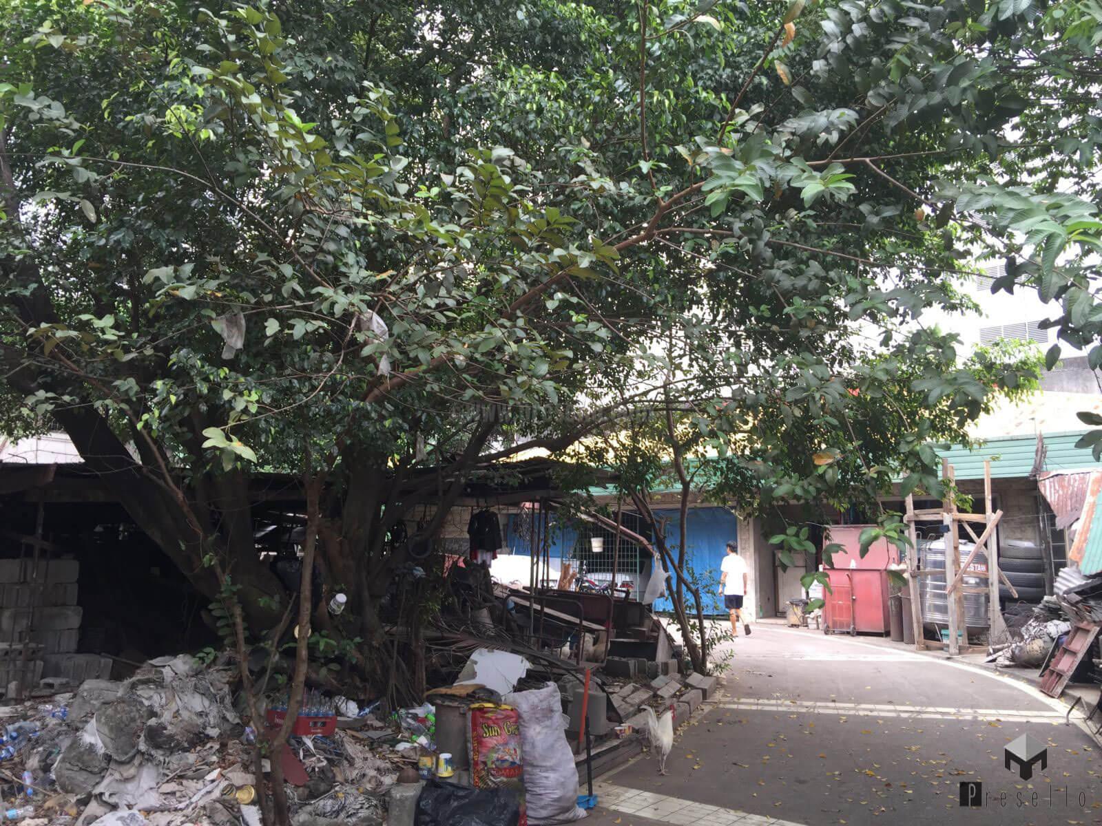 2396-Quezon-City (5)